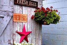 Chicken Coop ideas / Ideas to Linda's Chicken Coop
