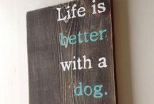 Four legged friends / Ideoita oman koirahoitolan perustamiseen!