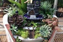 všetko pre záhradu / dekorácie na záhradu miniatúry na mini zahradku,rôzne iné záhradne doplnky,rastiny,kvety nápady a návody