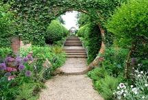 Nature:  Green Fingers / Gardening