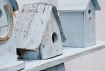Bird Houses, Feeders & Cages
