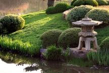 Nature:  Japanese Gardens