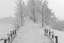 Seasons:  Winter Wonderland