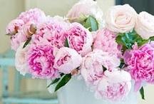 Flowers:  Peonies