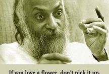 OSHO Quotes / #Love and #Meditation