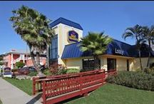 Best Western Oceanfront Cocoa Beach / Relax on the beach and listen to the sound of ocean waves crashing or go kayaking and surfing in Cocoa Beach.   Enjoy the comfort of our newly remodeled guest rooms and admire the view of the ocean from your balcony at our hotel. We are just steps away from the beach.   The Best Western Ocean Beach Hotel & Suites is the closest oceanfront hotel to Port Canaveral  www.bestwesterncocoabeach.com  / by Stay Cocoa Beach (Cocoa Beach Hotel Group)
