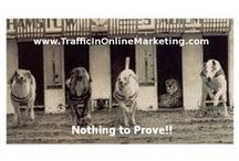 TrafficInOnlineMarketing - blog posts / New posts about earning money online