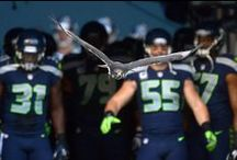 I am the 12th Man - well,  12th Woman!!  / All Things SEAHAWKS!  / by Cheree Williams