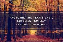 Autumn Inspiration / Trends to reflect the changing season with vivid colours and touchable textures.