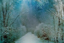 Wintertime / by Debra Temple