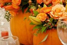Fall/Halloween / by Kelly