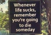 ≣ silliness ≣ / silly or funny quotes and ideas / by Jeff