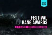 BANG AWARDS FESTIVAL / Bang Awards - International Film Cinema Animation » Slingshot production » This is a dynamic competition, aimed at the latest technologies and towards a public immersed in the digital arts, multimedia illustration and film animation. Making best use of its online platform, BANG can reach all users and be watched on any screen anywhere in the world. www.bang-awards.com