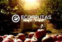 Vídeo Institucional / Central Fruteira Ecofrutas