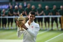Wimbledon 2014 / Grand Slam disputado no All England Club, em Londres.