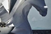 Favorite sailing pics