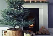 Christmas: Hide the tree stand!
