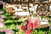 wedding Chairs / Chairs and decorations for weddings