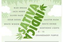 Marijuana/Cannabis / Marijuana/Cannabis related pins.