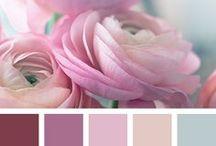 Color combinations / .