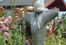 Wondrous Gardens / by Sue Fincham