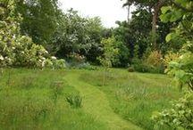Meadow Gardens