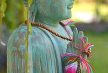Budismo e meditação