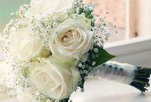 «« WEDDING »»