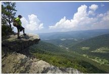 Hiking Trails / This area has many hiking trails offering hikers, of all fitness levels, a chance to spend time in nature. / by Appalachian School of Law