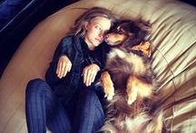 LOVE    dogs & celebs