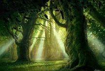 Enchanted Worlds