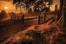 Year | 6 | September | Mabon / ... September 23 - October 22 ... beginning to mid autumn ... time of Libra ... Autumn Equinox ...Alban Elfed ... Alban Elved ... Alban Elued ... Mabon ... Second Harvest ... Harvest Home ... Thanksgiving ... Barley Moon ... Wine Harvest ... Mea'n Fo'mhair ... Feast of Avalon ... Festival of the Guardian Spirits ... Coll = Hazel Moon ... Eadha = Poplar Moon ... Quert = Apple Moon ... Cadal ... Cantlos ... Singing Moon  ... Indian Summer ...