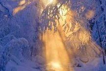 Year | 8 | December | Yule / ... December 21 - January 19 ... time of Capricorn ... early winter ... Winter Solstice ... Midwinter ... Alban Arthuan ... Alban Arthan ... Yule ... Yuletide ... Christmas ... Holy Night ... the returning sun ... Saturnalia ... the Wild Hunt ... Riúr ... Riuros ... Cold Moon ... Frost Moon ... Quiet Moon ... Winter Moon ... Moon of long nights ... Ngetal = Reed Moon / Broom Moon ... Straif = Blackthorn Moon ... Ailim = Silver Fir Moon ... Ruis = Elder Moon ... Beth = Birch Moon ...