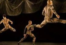 Dance Performances in Houston, Texas / A snapshot of some of the amazing local and touring dance performances in Houston over the last year