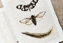 Love // Bees // Insects