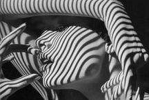 Black & White / black white pictures