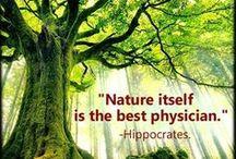 Health / ... remedies ... acupressure ... meditation ... aura ... walking barefoot ... earthing ... nature ... herbs ...  Meditation - Reflexzonen - Earthing - Vata