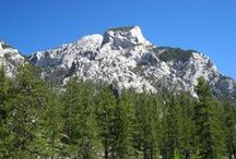 Mt. Charleston / A cool, beautiful escape just outside the city of Las Vegas.