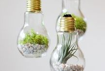 DIY Decor Inspired by Nature / Bringing the outdoors indoor with these fun and easy projects.