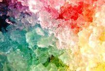 色とりどり   a  riot  of  color