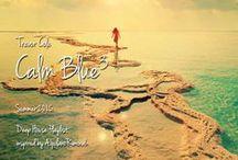 "Inspired Summer 2015 Calm Blue (Artblooms) / Trevor Cole's Deep House ""Calm Blue"" Playlist production inspire sources."