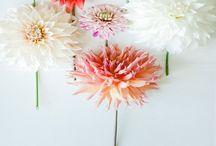 Trädgård och blommor - Garden and flowers