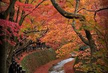 Views of Japan / Images du Japon