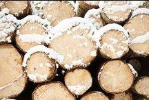 I WOOD TEXTURES I / #wood #texture