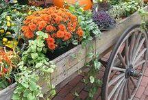 Autumn ~ Halloween / Automne dans l'Est du Canada # # # Fall in eastern Canada & US