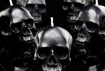 Schädel/Skulls