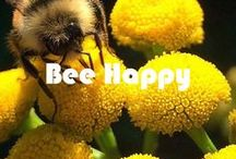 Bee Happy / A celebration of beautiful Bees in gratitude for them all that they do. Including Living Libations products containing Happy Honey and beeswax! Natural, organic, wildcrafted and beyond fair trade.
