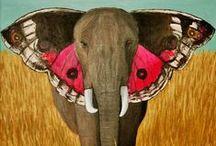 Elephants vs Butterflies /  elephants; butterflies; elefantes; borboletas;