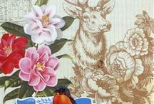 Pip Studio Wallpapers at Daisy Park / These papers definitely have the WOW factor