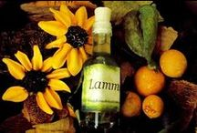 Lammas / Lughnasadh / Begins on the first day of August & celebrates the fruits of the first harvest ~ / by Angel